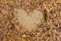 frame grass heart shaped of dry leaves on the ground Stock Image