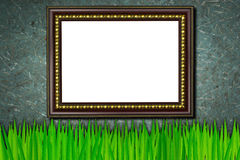 Frame on the grass and old wood background Royalty Free Stock Photography