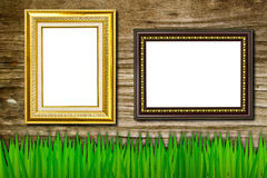 Frame on the grass and old wood background Stock Image