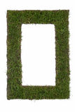 Frame of grass Royalty Free Stock Photography
