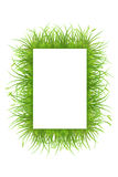 Frame with grass Stock Image