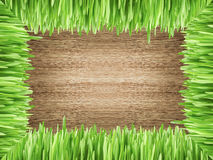 Frame with grass on the wood background Stock Image