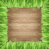 Frame with grass on the wood background Stock Images
