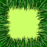 Frame of grass Royalty Free Stock Photo