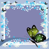 Frame with green butterfly. Abstract colorful summer frame with a green butterfly in a lower corner Stock Photos