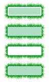 Frame of the green grass Royalty Free Stock Photography