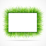 Frame with green grass Royalty Free Stock Photography