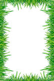 Frame of green grass isolated on a white background Royalty Free Stock Photos