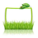 Frame with green grass and leaves Royalty Free Stock Photography