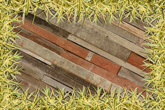 Frame of Green Grass on Wood Royalty Free Stock Photo