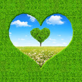 Frame from green heart. On the background spring meadow with tree in the shape of heart Royalty Free Stock Photography