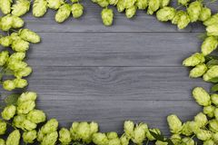Frame of hop cones on black wooden background. Ingredient for beer production. Top view with copy space for your text Royalty Free Stock Images
