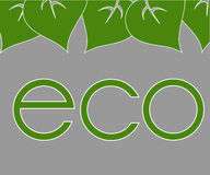 Frame of green leaves around labels eco. Frame of green leaves around labels, eco Royalty Free Illustration