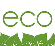 Frame of green leaves around labels eco. Frame of green leaves around labels, eco Stock Illustration