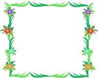 Frame of Green Leaves and Hibiscus Flowers Royalty Free Stock Images