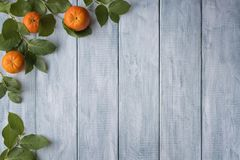 Frame of green leaves and mandarins on wooden vintage boards. stock photo