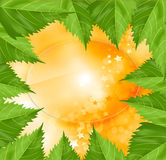 Frame of green leaves on an orange background Stock Photography