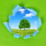 The frame of the green paper. With spring landscape Royalty Free Stock Photography