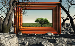 Frame with green tree Stock Photo