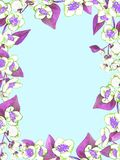 Frame greeting card design of white jasmine blooming branches with purple leaves on blue background. Hand painted watercolor illustration Royalty Free Stock Photography
