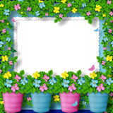 Frame for greeting with garland of flower Royalty Free Stock Images