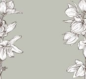 Frame with hand drawn flowers. EPS 10 Stock Photography