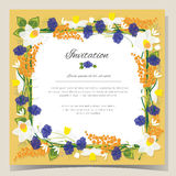 Frame Happy Birthday card Frame Wedding invitation card with flowers. Vector illustration Royalty Free Stock Image