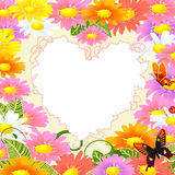 Frame is the heart of the daisies Royalty Free Stock Photography