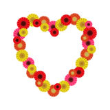 Frame heart of gerberas Royalty Free Stock Photo