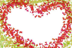 Frame heart green red leaves maple autumn Royalty Free Stock Photo