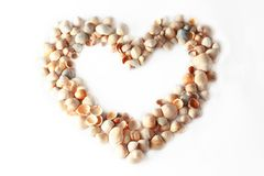Frame heart of sea shells. Heart of sea mussels isolated on white Stock Photography