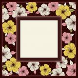 Frame of hibiscus, vector Royalty Free Stock Photos