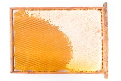 Frame with honeycombs and honey. On a white background. Top view Royalty Free Stock Images