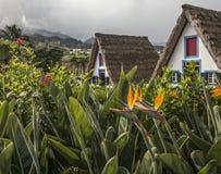 A-frame houses and a cloudy sky, Santana, Madeira. Royalty Free Stock Photography