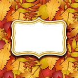 Frame labels on background with autumn leaves Royalty Free Stock Photography