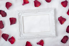 Frame laying on the Snow and Rose petals. Decorations and frame laying on the Snow and Rose petals royalty free stock photo