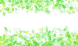 Frame Leaf Royalty Free Stock Image