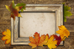 Frame and leaves Royalty Free Stock Photography