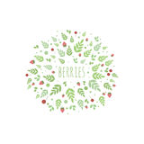 Frame with leaves and berries. Vector template for design Royalty Free Stock Photography