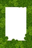 Frame leaves clover trefoil shamrock  pattern Stock Photo