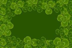 Frame leaves clover trefoil shamrock  pattern Stock Image