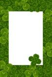 Frame leaves clover trefoil shamrock  pattern Royalty Free Stock Photos