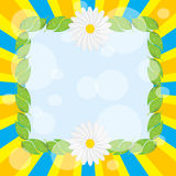 Frame of leaves and daisies. Frame leaf decoration daisies on a bright background Royalty Free Stock Photography