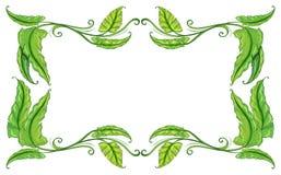 Frame of leaves Stock Photo