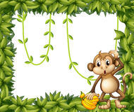 A  frame of leaves with a monkey and bananas Stock Photos