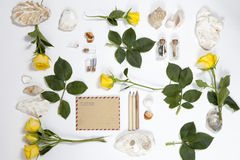 Frame from the leaves of roses and shells on white background. Memory of summer Royalty Free Stock Photos