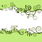 Frame from leaves and white space. White frame with green edges and leaves Stock Image