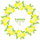 Frame of Lemons with leaves on a white background Royalty Free Stock Image