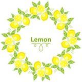 Frame of Lemons with leaves on a white background. Vector illustration royalty free illustration