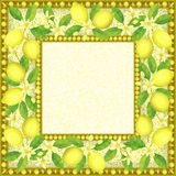 Frame with Lemons Stock Images